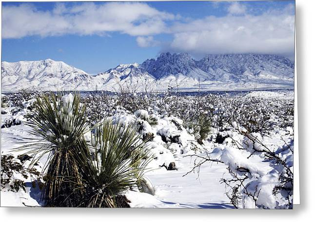 Winter's Blanket Organ Mountains Greeting Card by Kurt Van Wagner