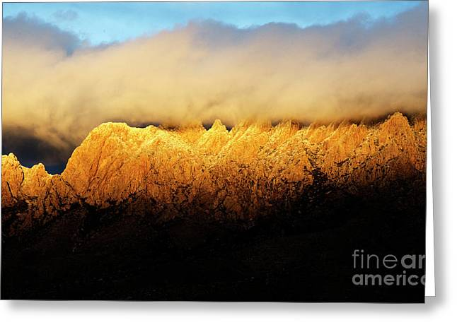 Organ  Mountains Alpen Glow Greeting Card by Bob Christopher