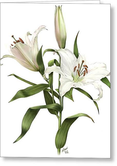 Oriental Lily Siberia Greeting Card