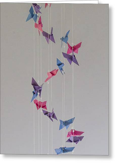 Origami Butterfly Spiral Mobile  1622 Greeting Card