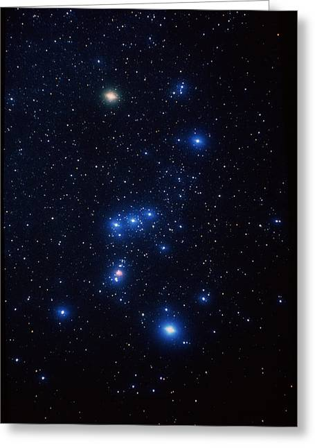 Orion Constellation Greeting Card by John Sanford
