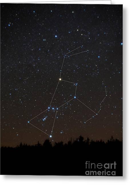 Orion Constellation Greeting Card by Larry Landolfi