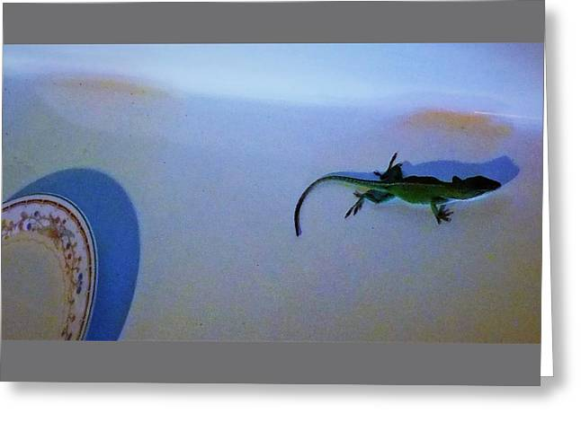 Greeting Card featuring the photograph Oscar The Lizard by Denise Fulmer