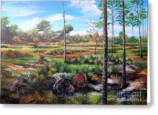 Osceola Turkeys And Florida Panther - Life  After The Burn Greeting Card by Daniel Butler