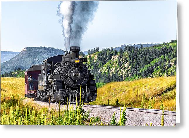 Osier Bound 484 Greeting Card