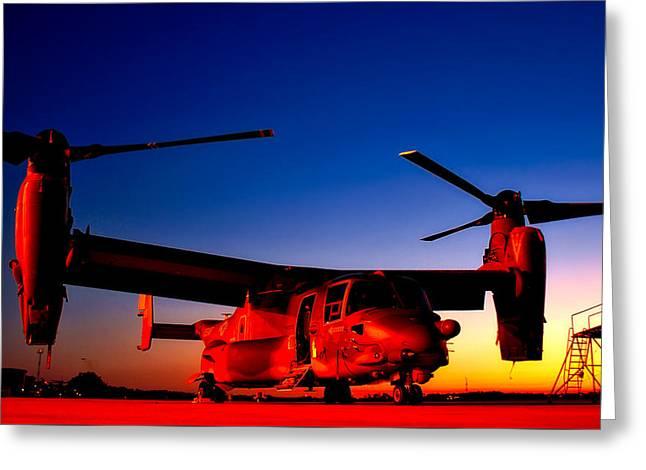 Osprey At Sunset Greeting Card