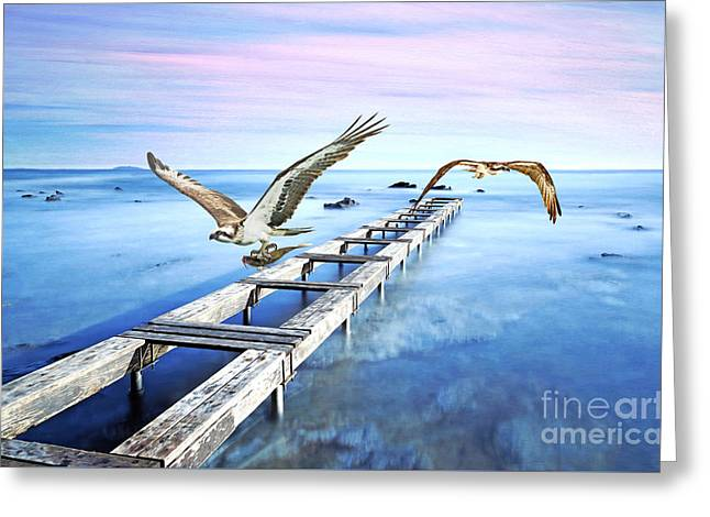 Osprey On The Move Greeting Card