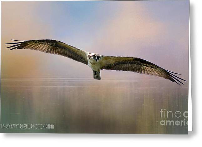 Osprey Over The Shenandoah Greeting Card by Kathy Russell
