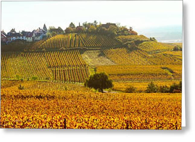 Ostheim Village And Vineyards Greeting Card by Panoramic Images