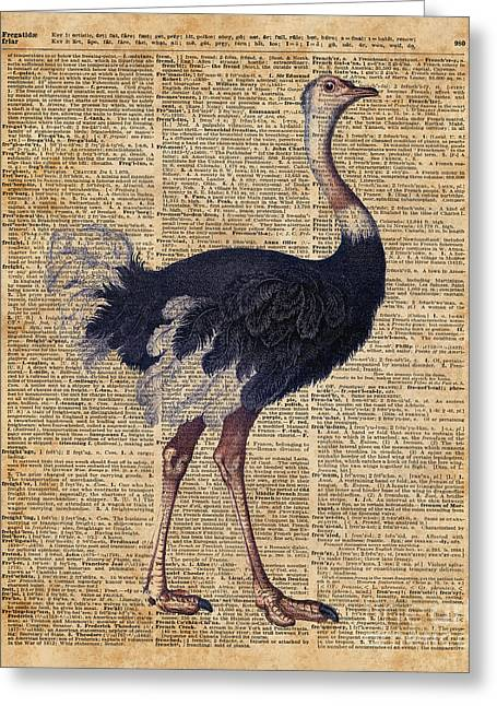 Ostrich Big Bird Animal Vintage Dictionary Illustration Greeting Card by Jacob Kuch