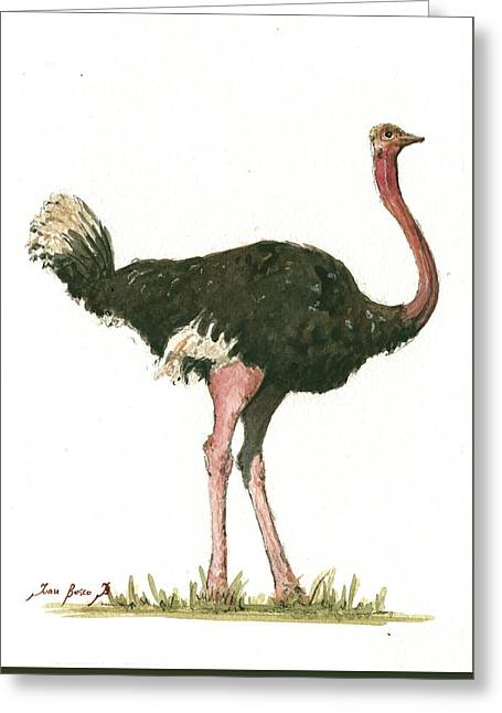 Ostrich Bird Greeting Card by Juan Bosco
