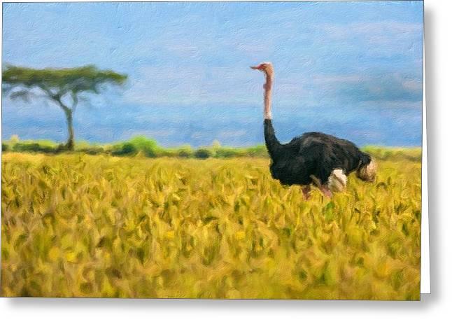 Ostrich Walking In Lake Nakuru National Park, Kenya Greeting Card