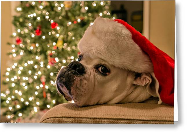 Otis Claus Greeting Card