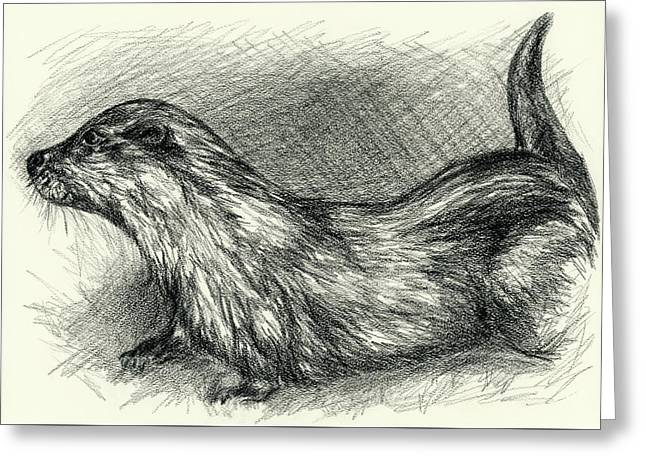 Otter In Charcoal Greeting Card