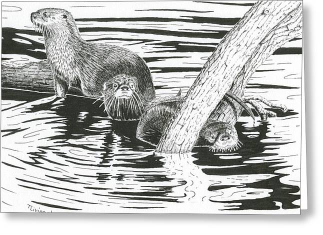 Otters Three Greeting Card