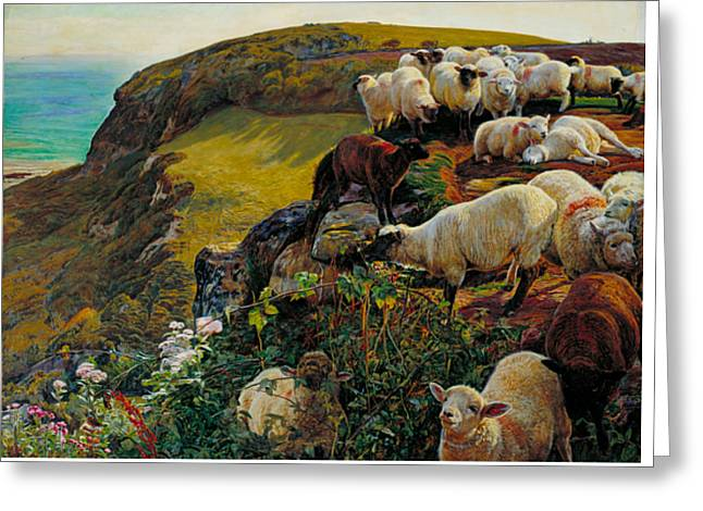 Our English Coasts Or Strayed Sheep Greeting Card