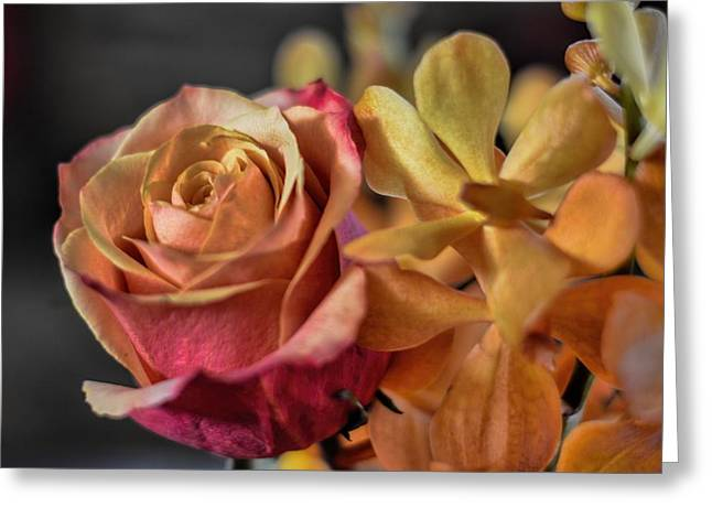 Greeting Card featuring the photograph Our Passion by Diana Mary Sharpton