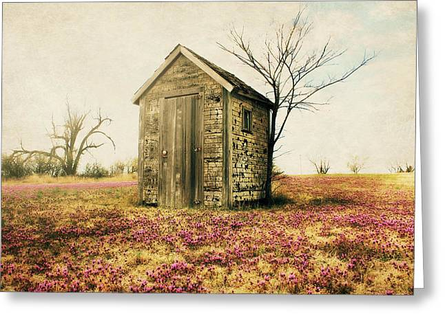 Outhouse Greeting Card by Julie Hamilton