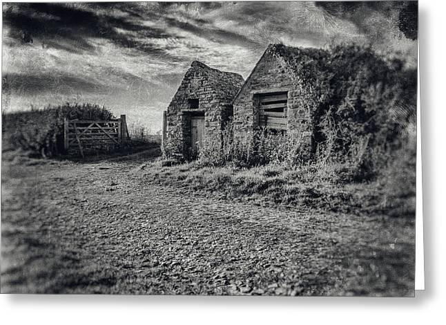 Out House Greeting Card by Stewart Scott