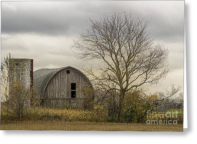Out In The Country Greeting Card by JRP Photography