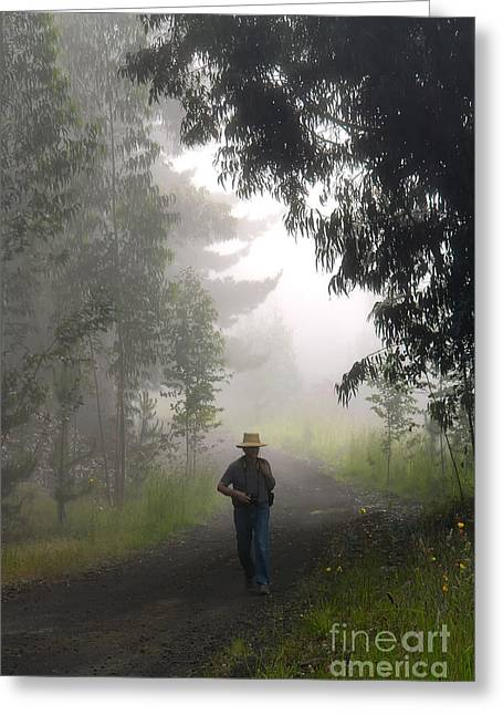 Out Of The Fog Greeting Card by Frank Wicker