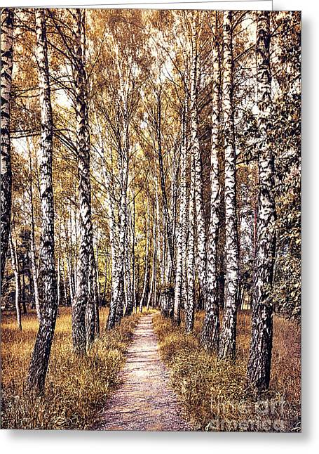 Out Of The Forest And Into The Trees Greeting Card by Evelina Kremsdorf