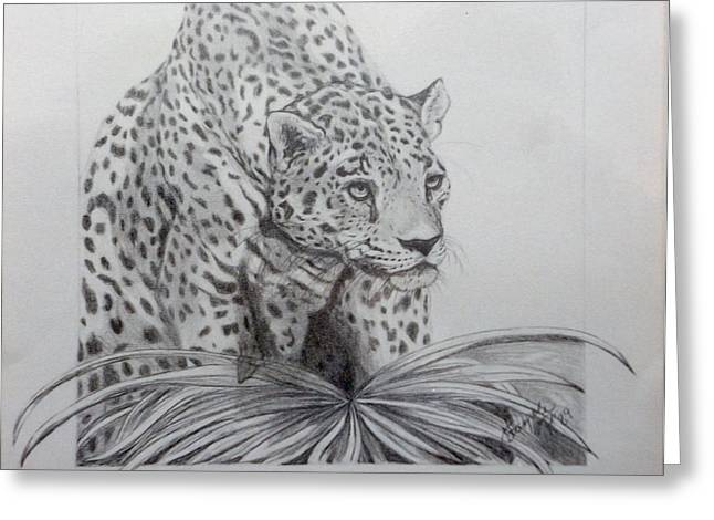 Wild Life Drawings Greeting Cards - Out of the picture Greeting Card by Nancy Rucker