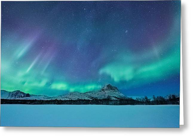 Out Of The Woods Greeting Card by Tor-Ivar Naess