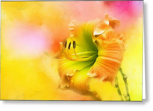 Out Of Yellow Greeting Card