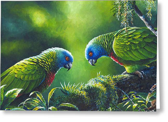 Out On A Limb - St. Lucia Parrots Greeting Card by Christopher Cox