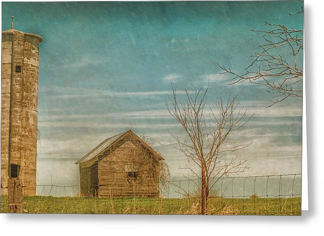 Out On The Farm Greeting Card by Pamela Williams