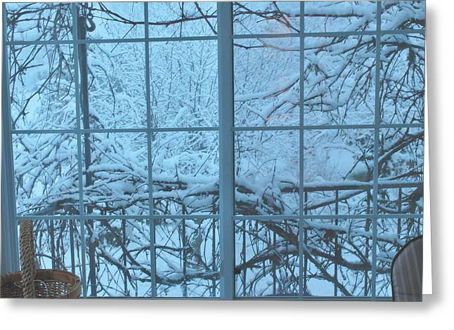 Out The Window Greeting Card by Peter Williams