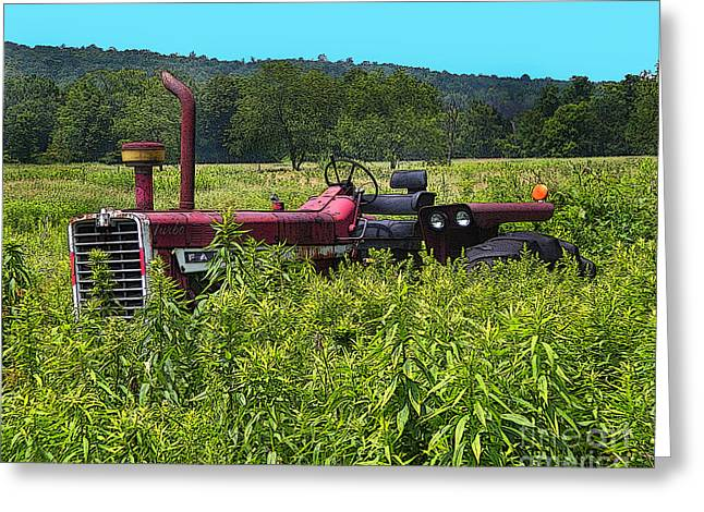 Out To Pasture Greeting Card by Diane E Berry