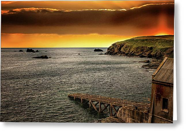 Out To Sea Greeting Card by Martin Newman