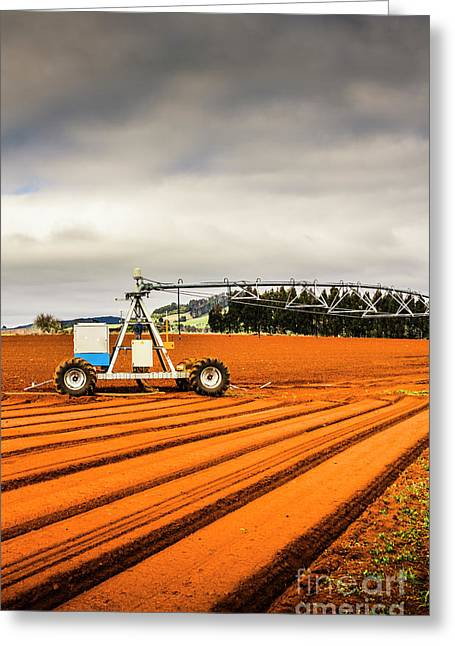 Outback Australia Agriculture Greeting Card