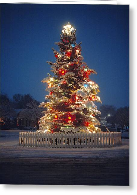 Outdoor Christmas Tree Greeting Card by Utah Images