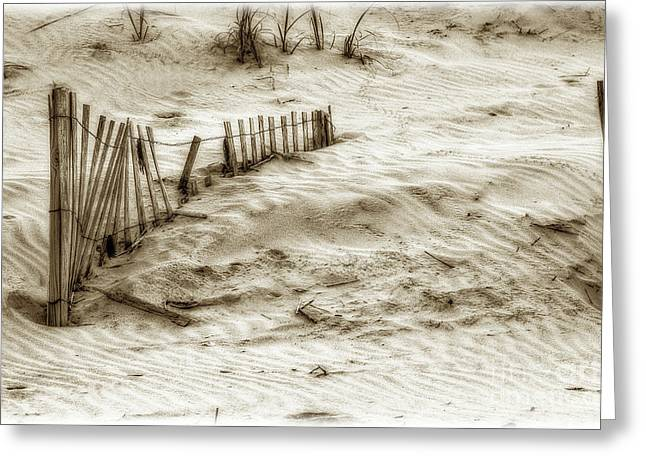 Outer Banks Beach Sand Fence  Greeting Card by Randy Steele