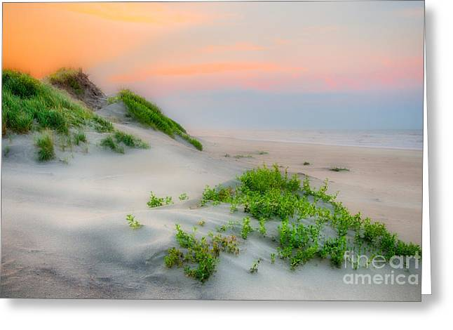 Outer Banks Soft Dune Sunrise Greeting Card