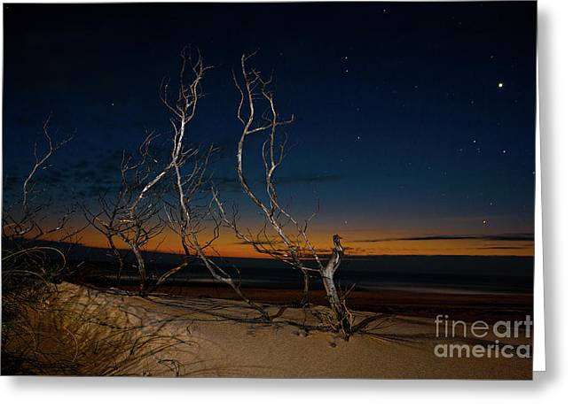 Greeting Card featuring the photograph Outer Banks Sunrise With Venus And Scorpio by Dan Carmichael