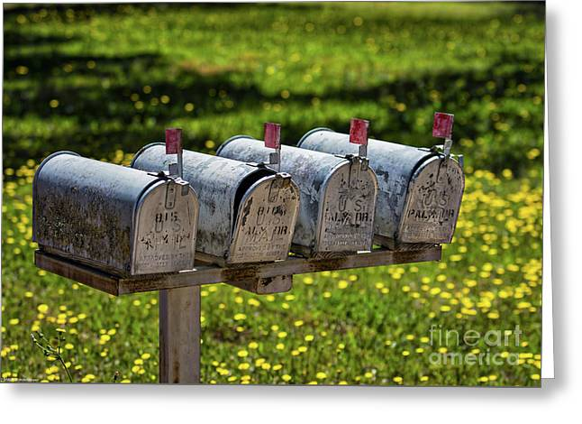 Outgoing Mail Greeting Card