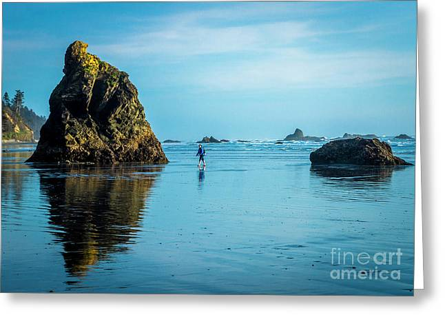 Outing In Ruby Beach,wa Greeting Card