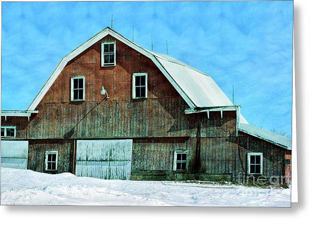 Outlasted Greeting Card by William Tasker