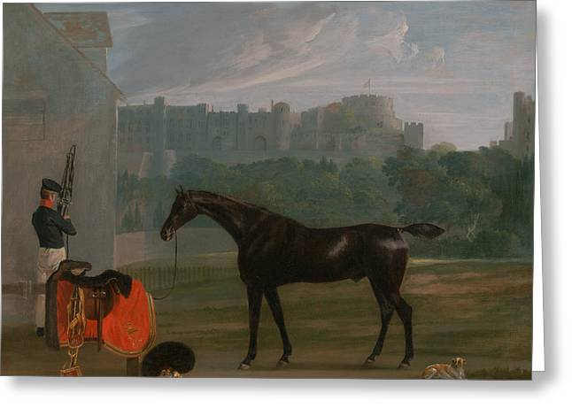 Outside The Guard House At Windsor Greeting Card by Edmund Bristow