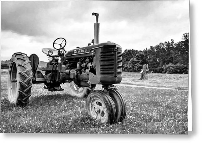 Outstanding In It's Field Black And White Greeting Card by Mel Steinhauer