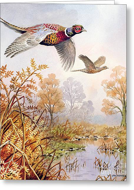 Over The Fen Greeting Card