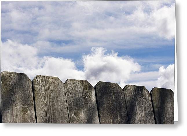Over The Fence Greeting Card by Rebecca Cozart