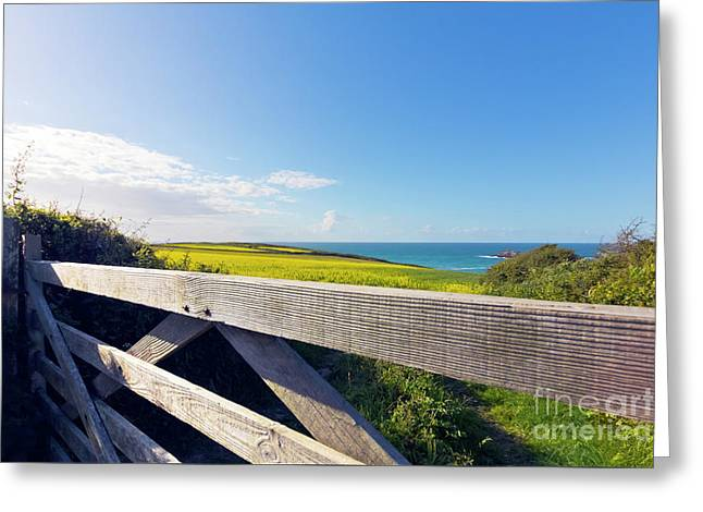 Over The Gate Greeting Card by Terri Waters