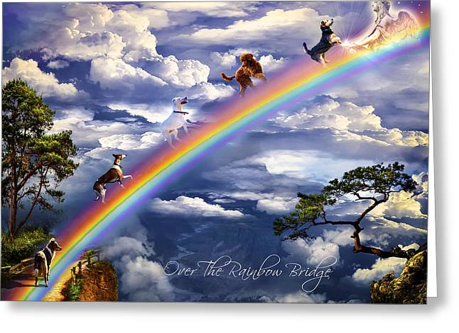 Over The Rainbow Bridge Greeting Card