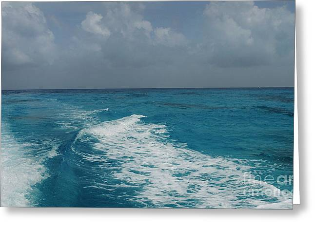 Over The Reef Greeting Card