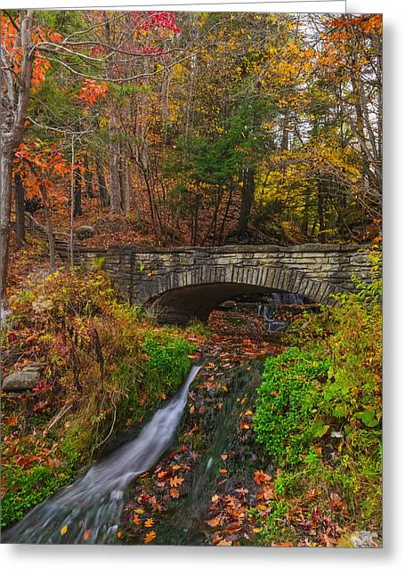 Over The Stream Greeting Card by Mark Papke